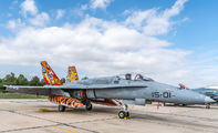C.15-14 - Spain - Air Force McDonnell Douglas F/A-18A Hornet aircraft