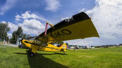 SP-OKO - Aeroklub Nowy Targ Aviat A-1 Husky
