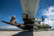 AF93-1313 - Taiwan - Air Force Lockheed C-130H Hercules aircraft