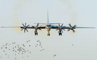 56 - Russia - Navy Tupolev Tu-142 aircraft