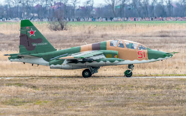 51 - Russia - Air Force Sukhoi Su-25