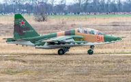 51 - Russia - Air Force Sukhoi Su-25 aircraft