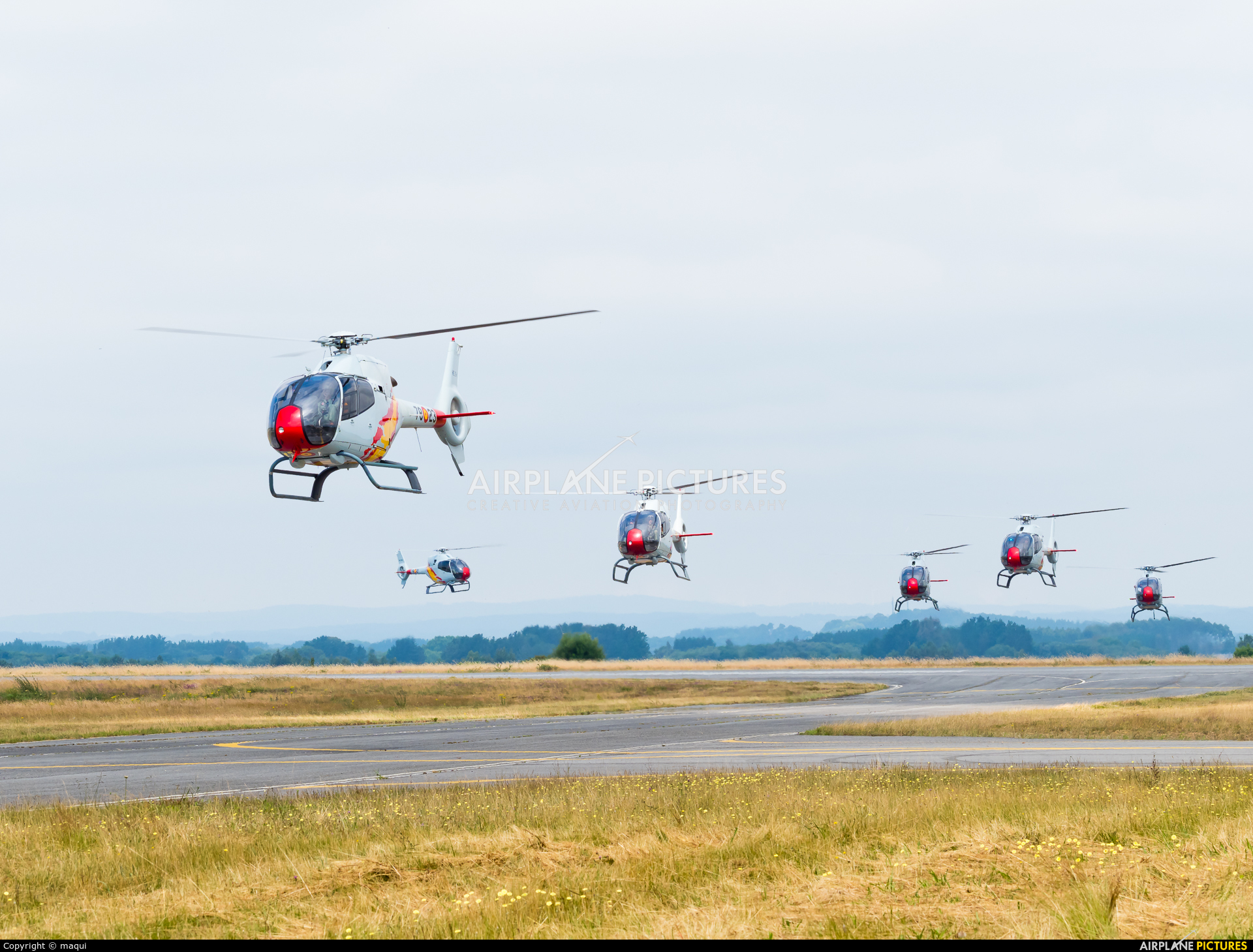 Spain - Air Force: Patrulla ASPA HE.25-4 aircraft at Lugo - Rozas