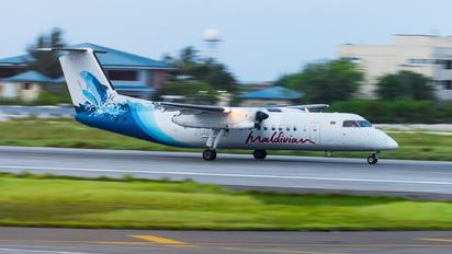 8Q-IAK - Maldivian de Havilland Canada DHC-8-300Q Dash 8