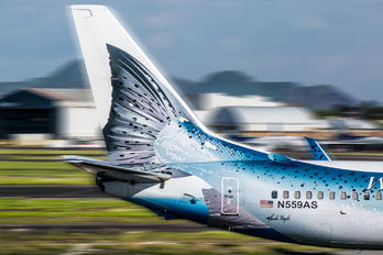 N559AS - Alaska Airlines Boeing 737-800