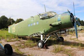 05 - Belarus - DOSAAF PZL An-2