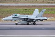 HN-404 - Finland - Air Force McDonnell Douglas F/A-18C Hornet aircraft