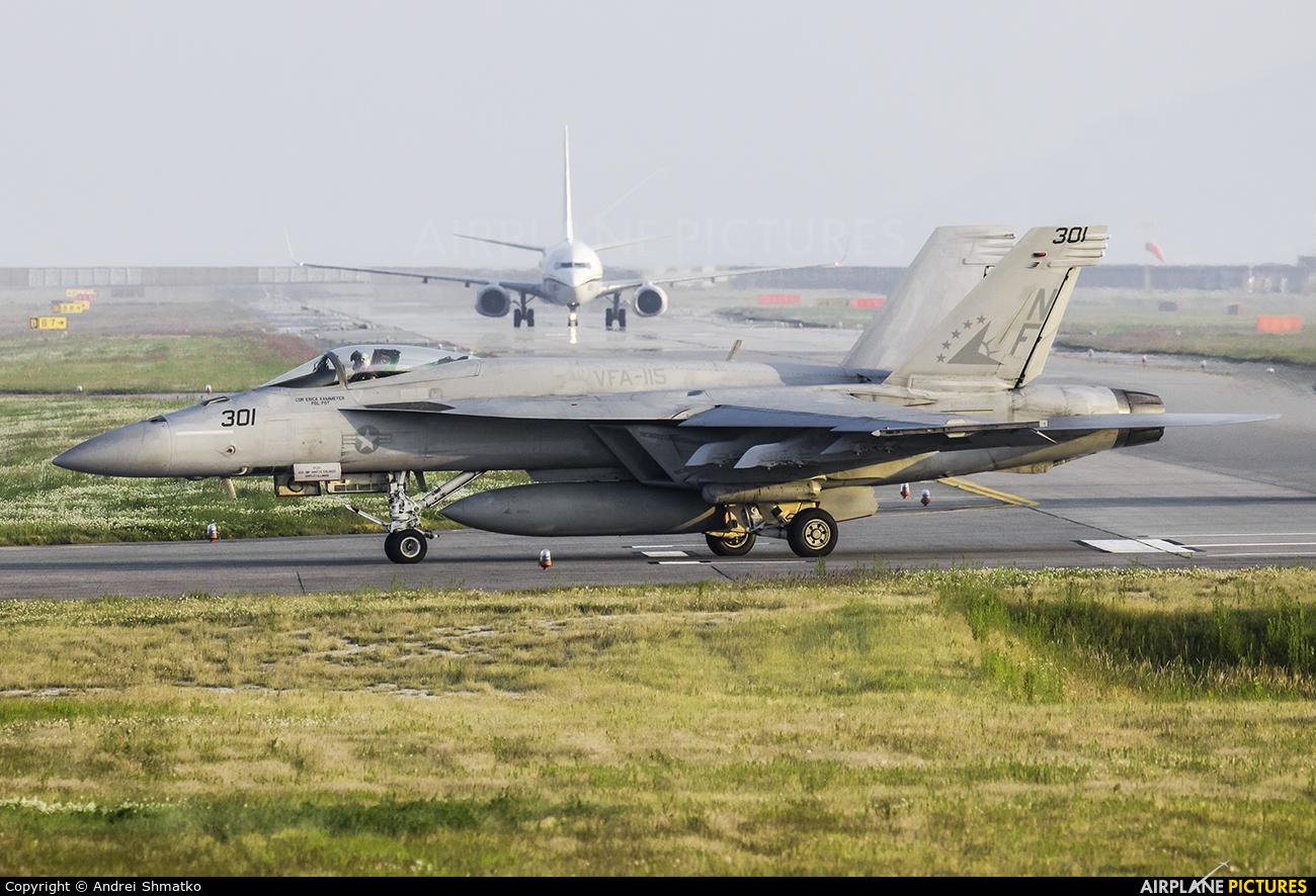 USA - Navy 166860 aircraft at Iwakuni MCAS