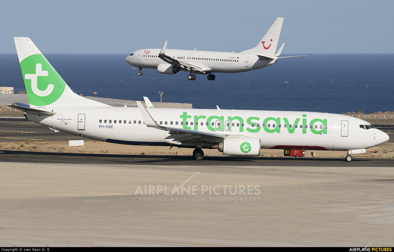 Transavia PH-HXE aircraft at Tenerife Sur - Reina Sofia