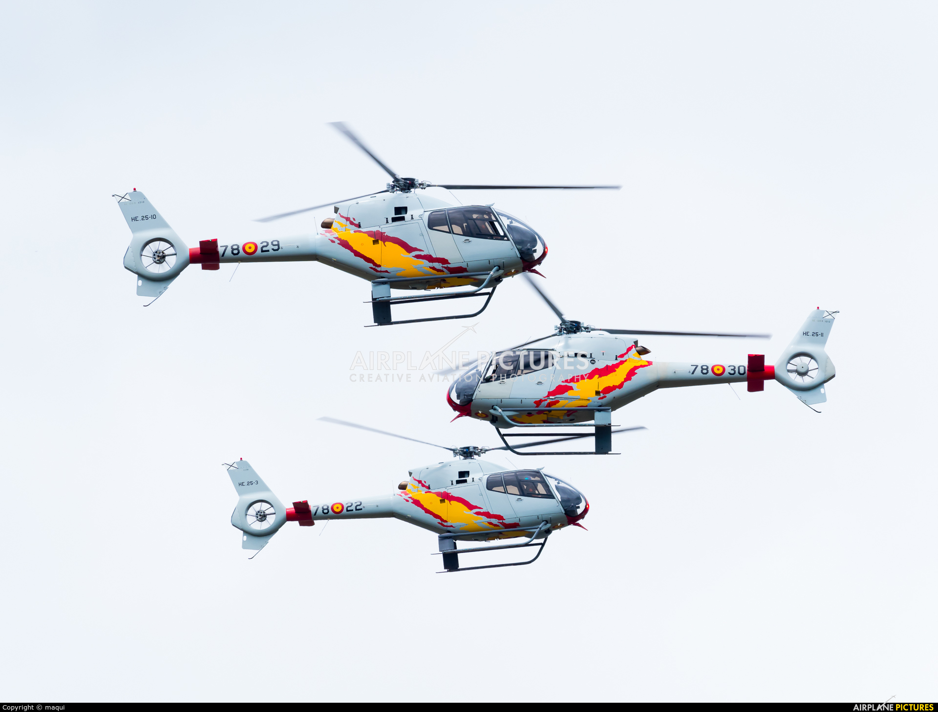 Spain - Air Force: Patrulla ASPA HE.25-11 aircraft at Lugo - Rozas