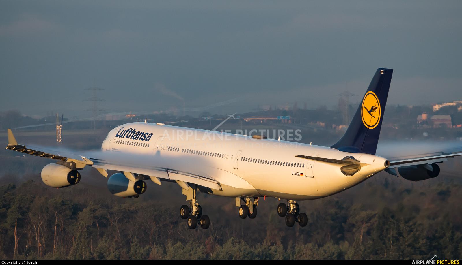 Lufthansa D-AIGZ aircraft at Frankfurt