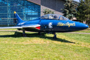146417 - USA - Navy : Blue Angels Grumman TF-9J Cougar aircraft