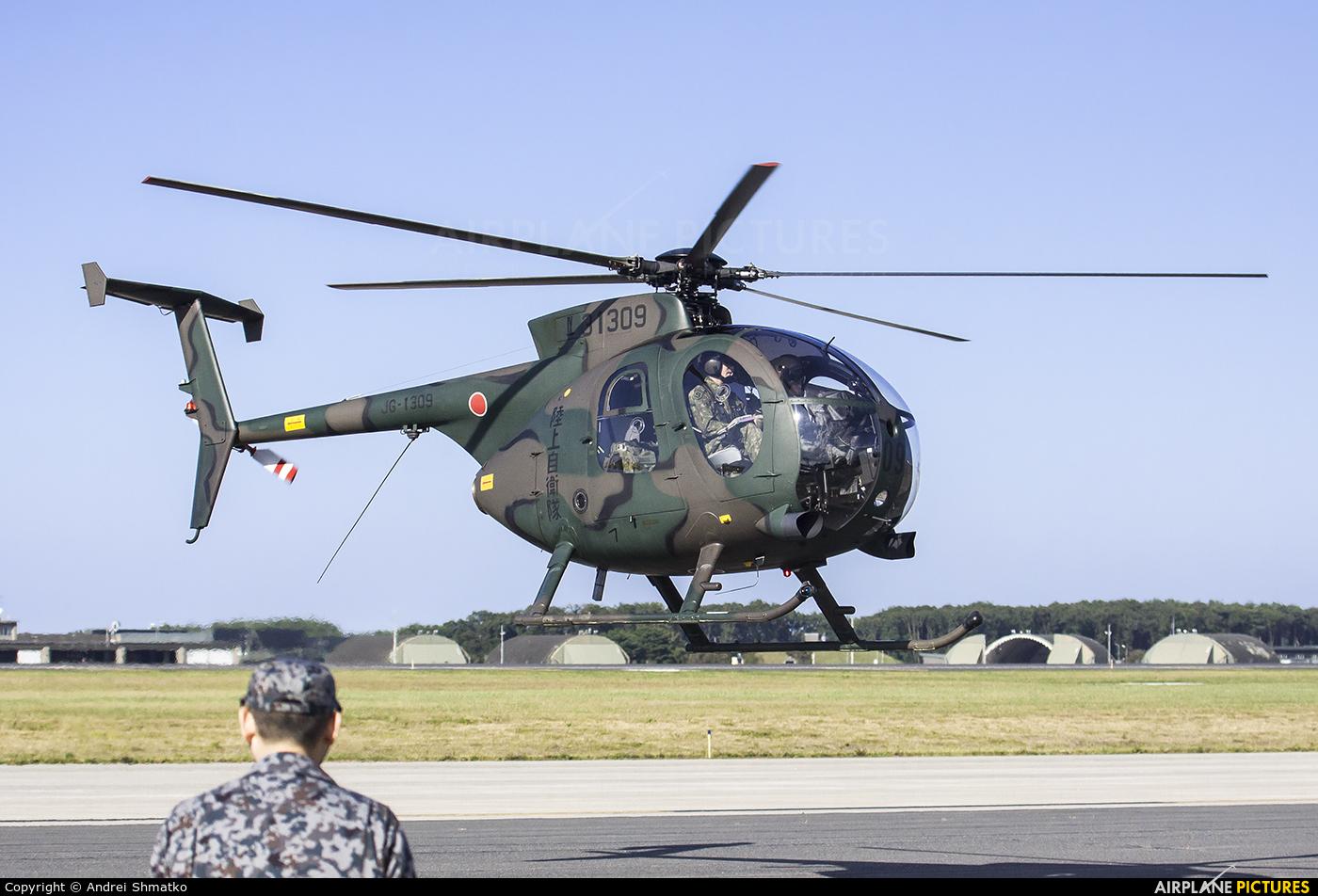 Japan - Ground Self Defense Force 31309 aircraft at Misawa