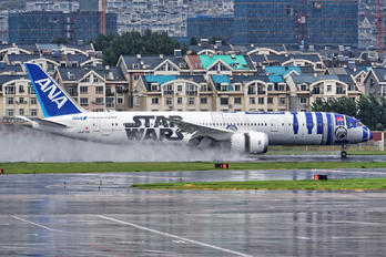 JA873A - ANA - All Nippon Airways - Airport Overview - Photography Location