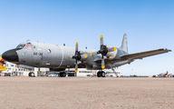 P.3M-09 - Spain - Air Force Lockheed P-3AM Orion aircraft