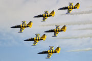 - - Baltic Bees Jet Team   aircraft