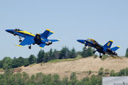 163741 - USA - Navy : Blue Angels McDonnell Douglas F-18C Hornet aircraft