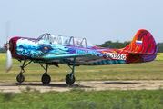 RA-1355G - Private Yakovlev Yak-52 aircraft