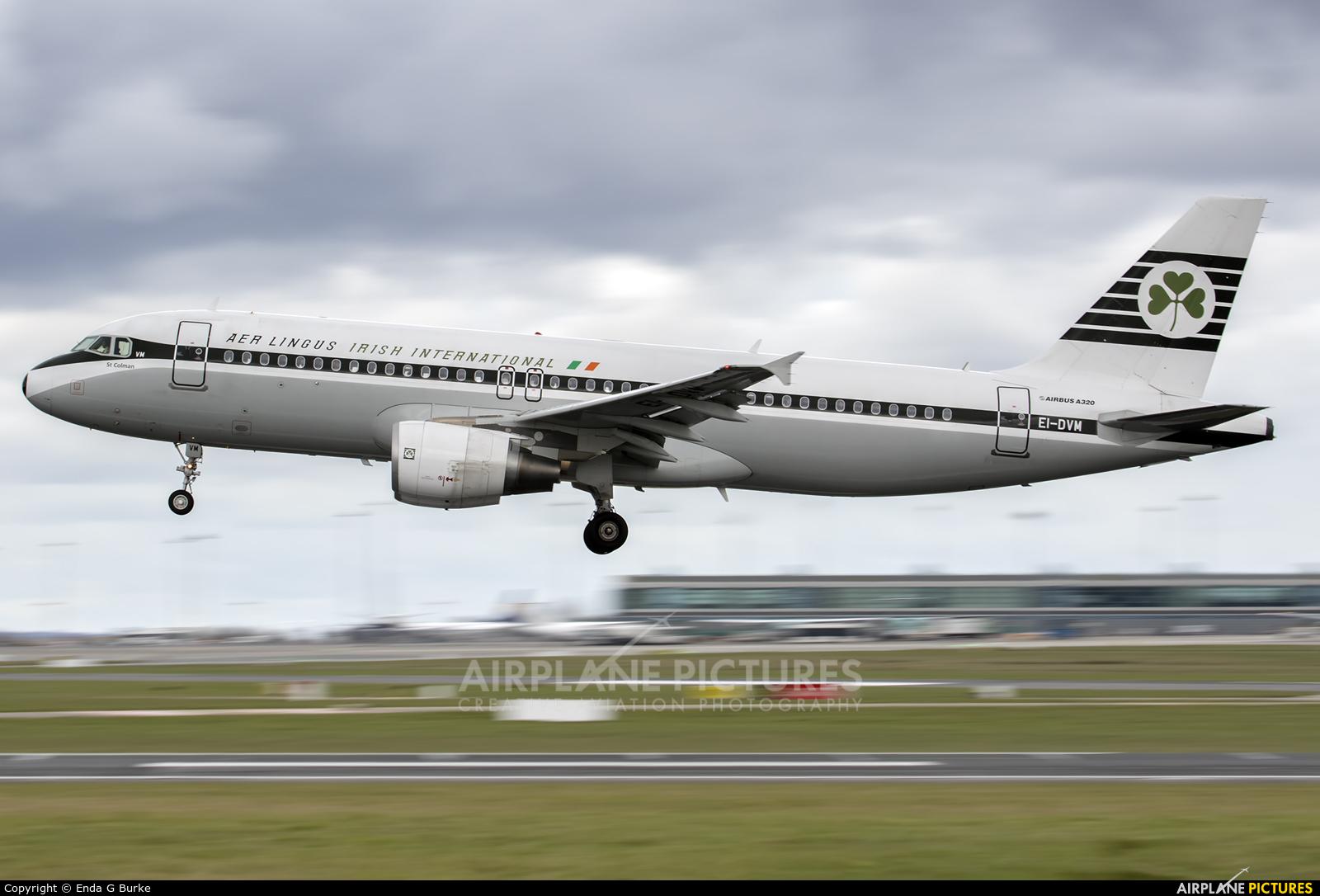 Aer Lingus EI-DVM aircraft at Dublin
