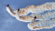LY-ANP - ANBO aerobatic team Yakovlev Yak-50 aircraft