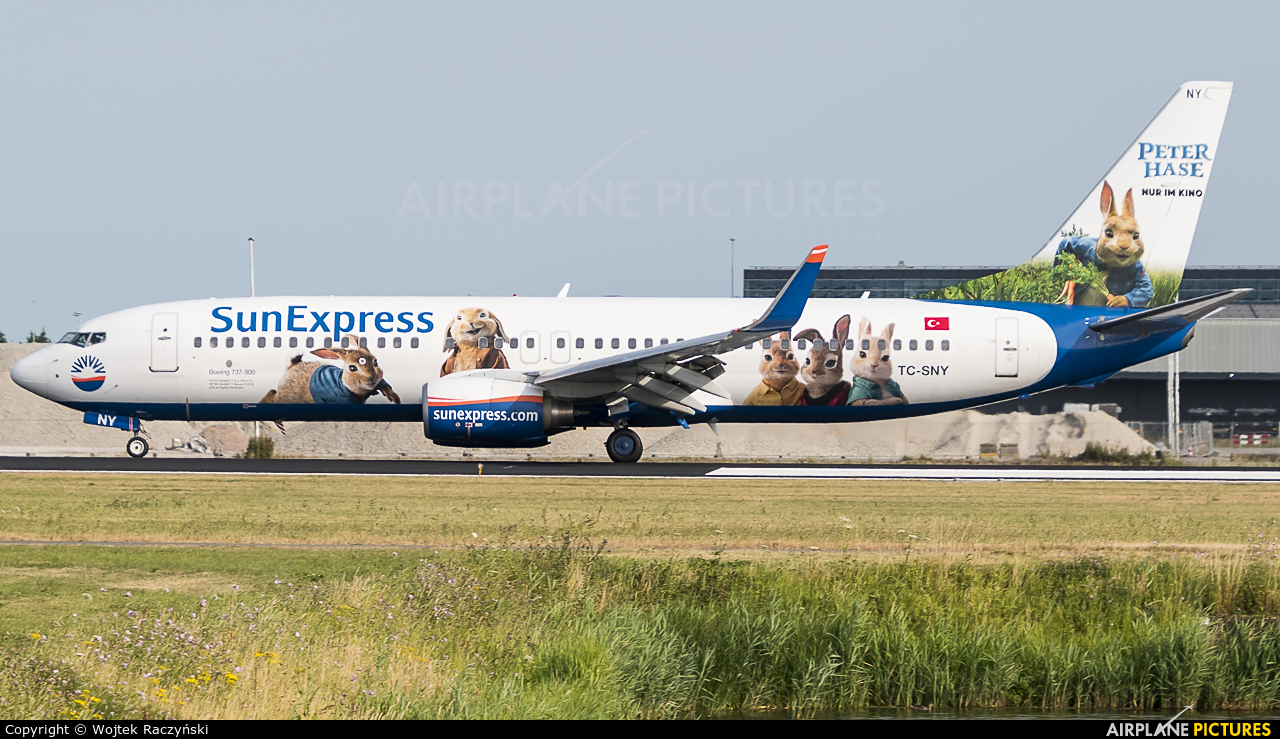 SunExpress TC-SNY aircraft at Amsterdam - Schiphol
