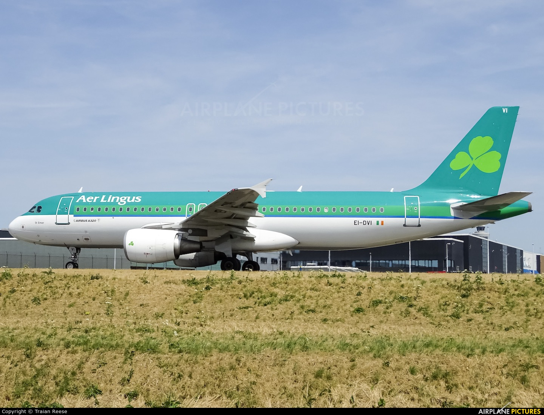 Aer Lingus EI-DVI aircraft at Amsterdam - Schiphol