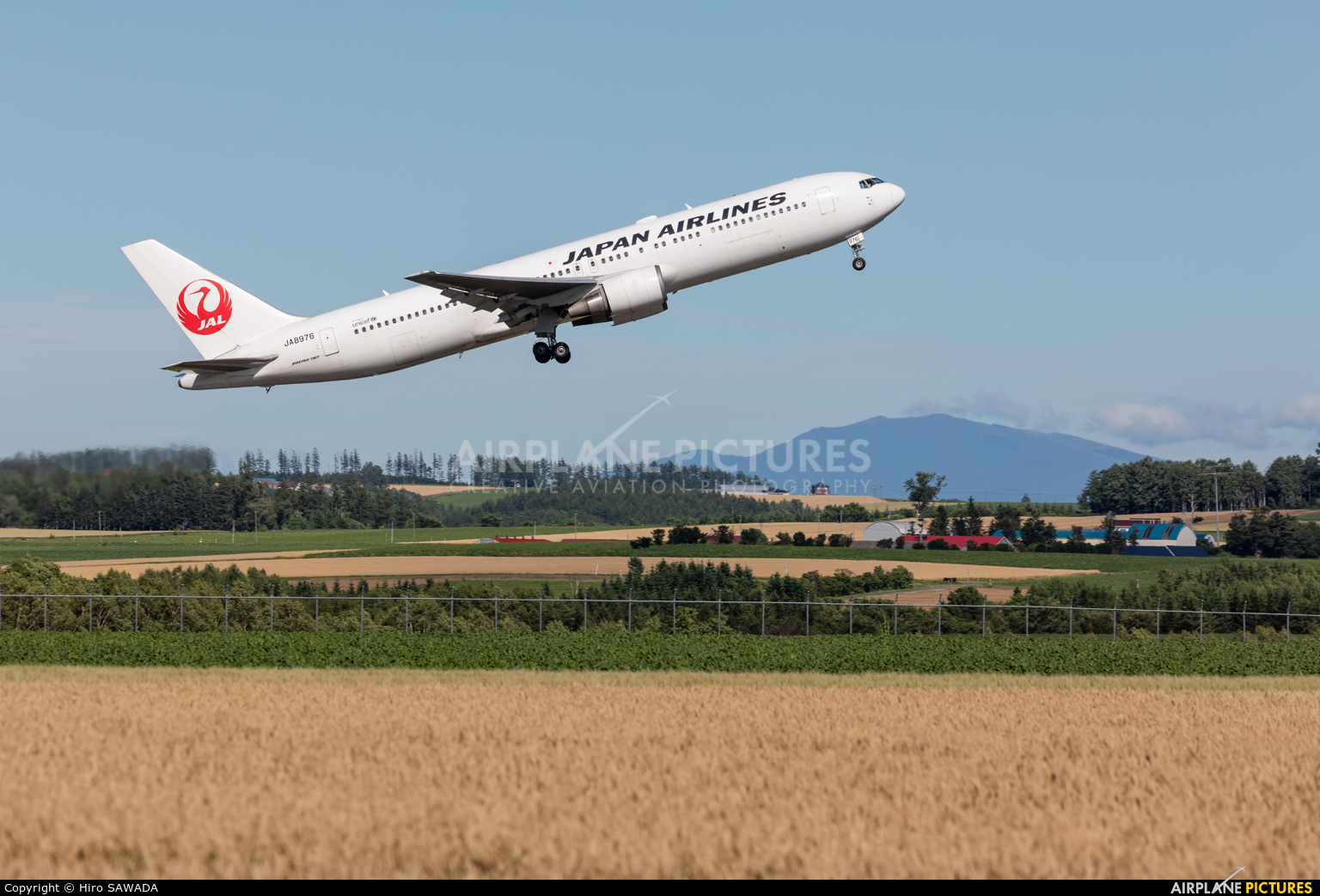 JAL - Japan Airlines JA8976 aircraft at Memanbetsu
