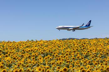 JA70AN - ANA - All Nippon Airways Boeing 737-800