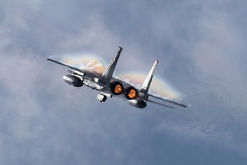 328098 - Japan - Air Self Defence Force Mitsubishi F-15DJ