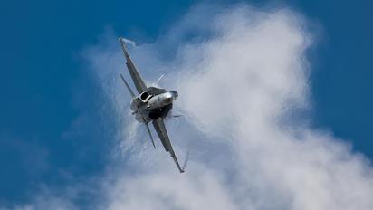 J-5013 - Switzerland - Air Force McDonnell Douglas F-18C Hornet