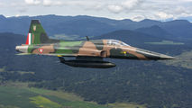 4510 - Mexico - Air Force Northrop F-5E Tiger II aircraft