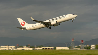 JA335J - JAL - Japan Airlines Boeing 737-800