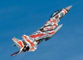 32-8082 - Japan - Air Self Defence Force Mitsubishi F-15DJ aircraft