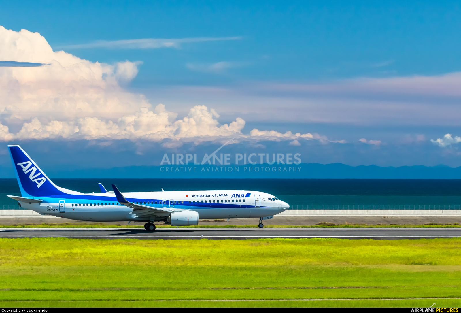 ANA - All Nippon Airways JA75AN aircraft at Oita
