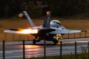 HN-466 - Finland - Air Force McDonnell Douglas F-18D Hornet aircraft