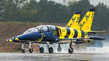 Baltic Bees Jet Team YL-KSH image