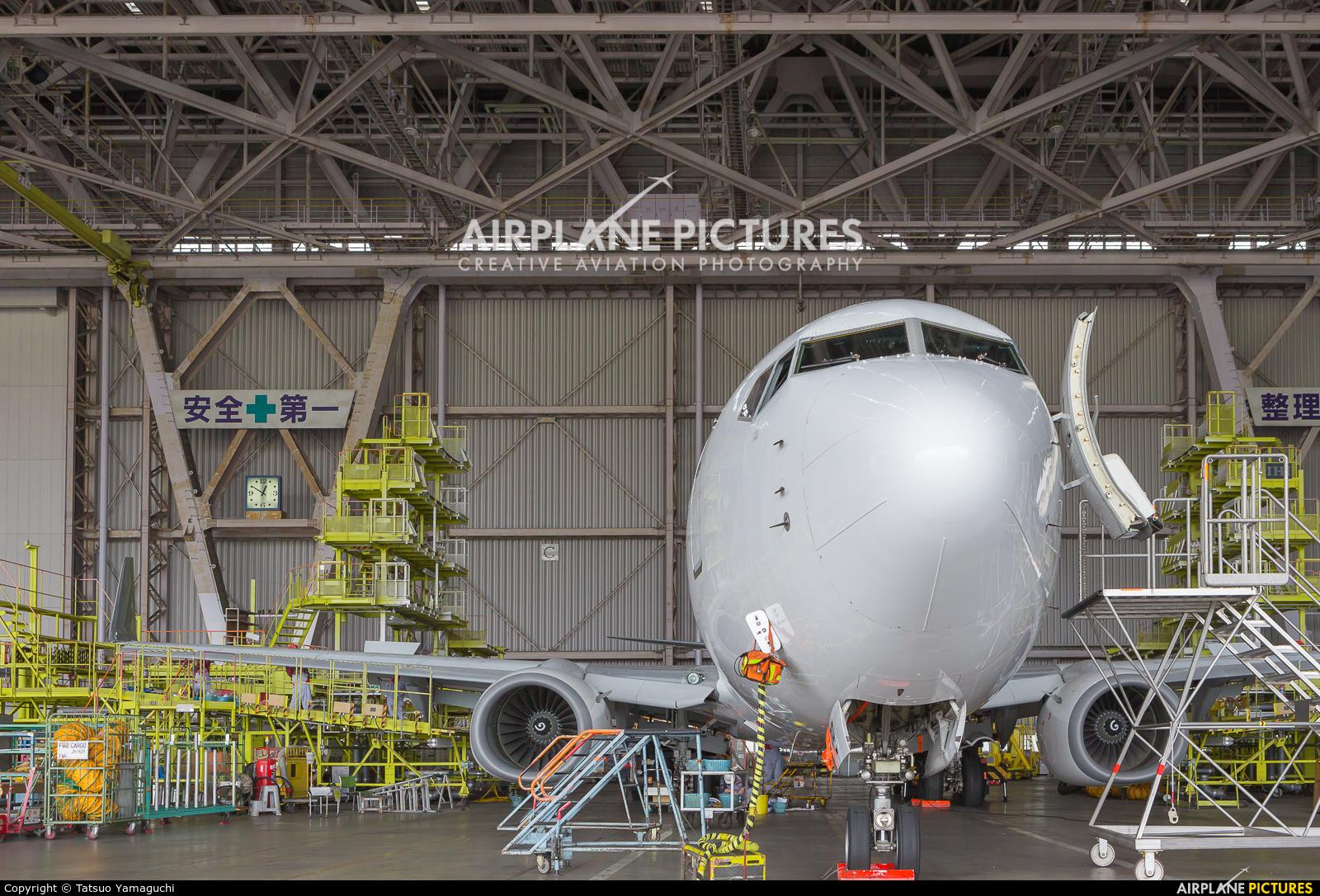 - Airport Overview JA319J aircraft at Tokyo - Haneda Intl