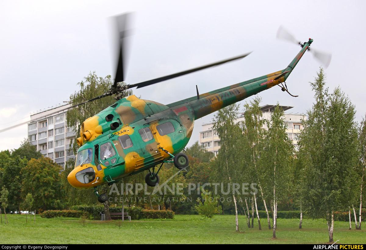 Belarus - DOSAAF EW-124AO aircraft at Off Airport - Belarus