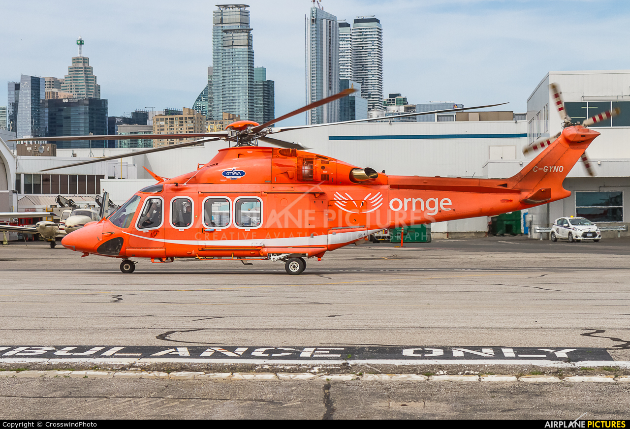 ORNGE C-GYNO aircraft at Toronto - Billy Bishop, ON