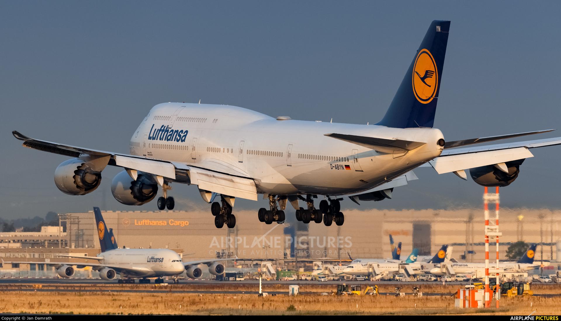 Lufthansa D-ABYN aircraft at Frankfurt