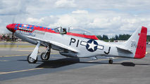 N51ZM - Private North American P-51D Mustang aircraft