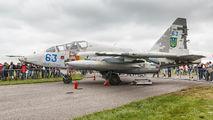 63 - Ukraine - Air Force Sukhoi Su-25UB aircraft