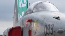 J-3093 - Switzerland - Air Force Northrop F-5E Tiger II aircraft