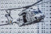 N-319 - Netherlands - Navy NH Industries NH90 NFH aircraft