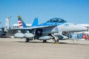 165801 - USA - Navy McDonnell Douglas F/A-18F Super Hornet aircraft