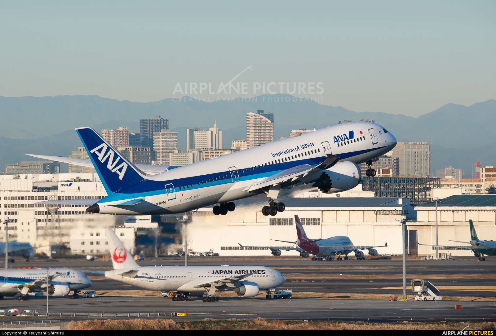 ANA - All Nippon Airways JA816A aircraft at Tokyo - Haneda Intl