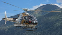 OE-XGA - Wucher Helicopter Aerospatiale AS350 Ecureuil / Squirrel aircraft
