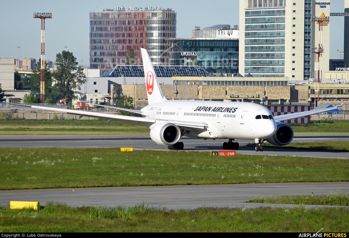 JAL - Japan Airlines JA823J aircraft at St. Petersburg - Pulkovo