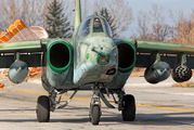 246 - Bulgaria - Air Force Sukhoi Su-25 aircraft