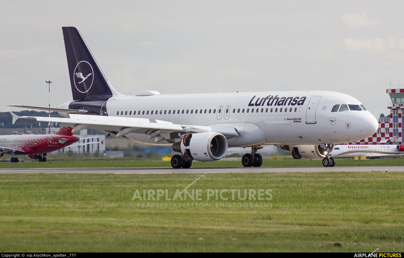Lufthansa D-AIZC aircraft at St. Petersburg - Pulkovo